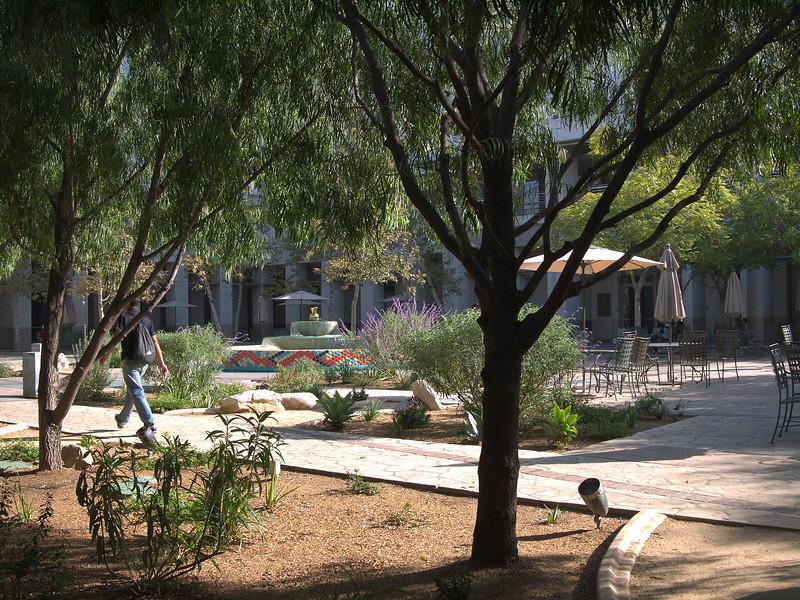New Lens, First Shot Outside.  LA DWP Garden