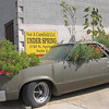 Los Angeles, Car as Planter