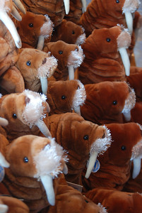 plush walruses.  I saw a picture once of a giant group of walruses crowded together on the beach and this reminded me of that.