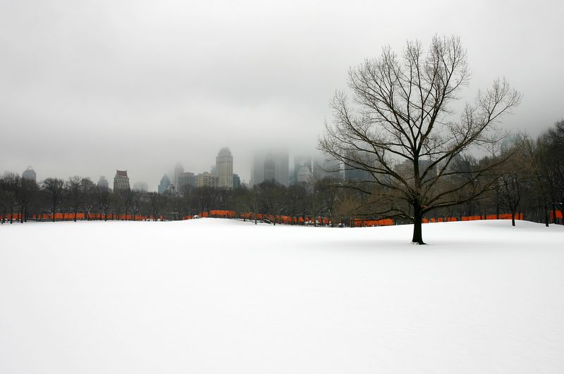 the gates in central park (with snow), new york city, by christo and jeanne-claude