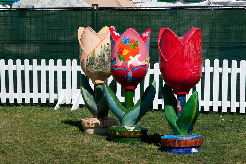 Wooden tulips at the Canadian Tulip Festival.