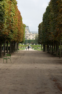 Among the Tuileres