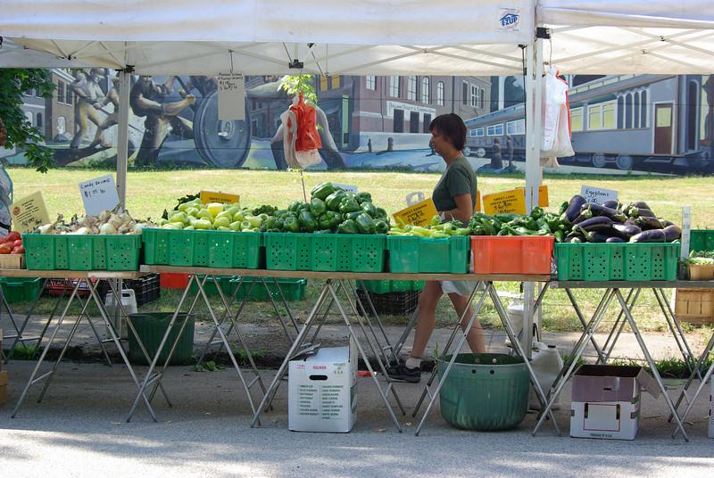 Pullman Farmer's Market (August 2009)