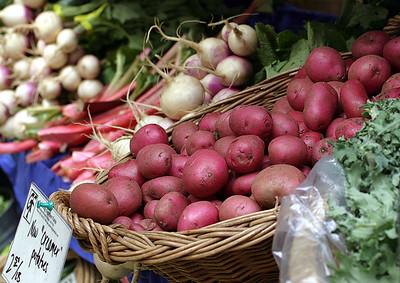 Portland Farmer's Market (June 2005)