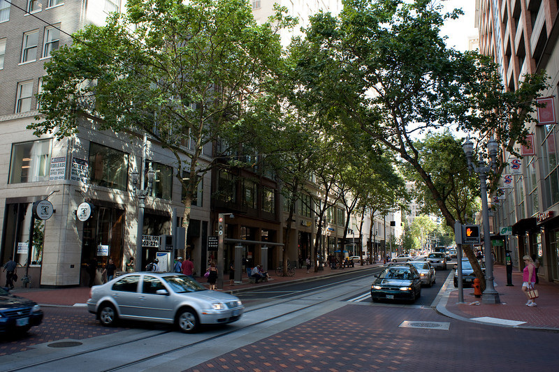 This is the newly rebuilt transit mall in downtown Portland.  Since the 1970s, two north-south downtown streets have been designated bus corridors.  These streets have now been reconfigured to carry MAX trains as well as buses.
