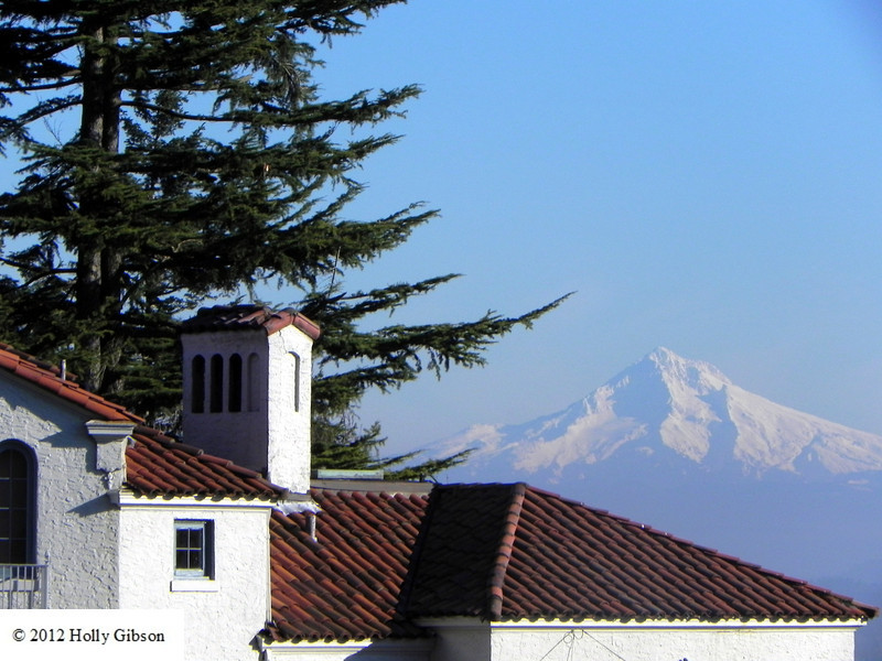 Mt. Hood and tile roof