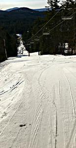 White Pine.