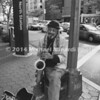 Sax man on DC street corner img142