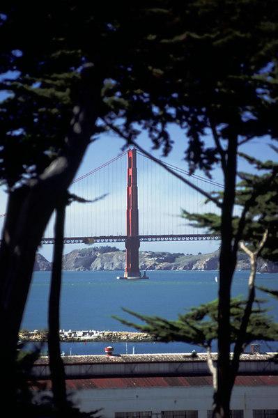 San Francisco - Golden Gate Bridge from the Presidio