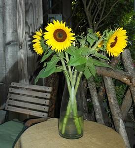 sunflower_vase