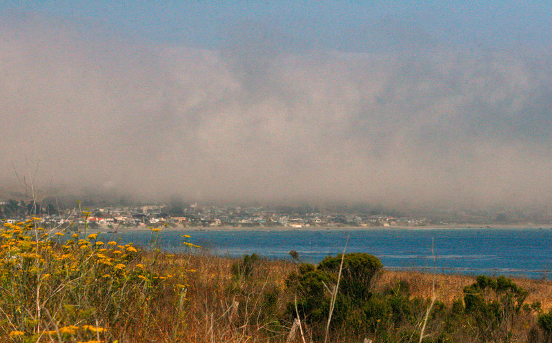 sunny side of fog