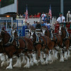 The clydedales