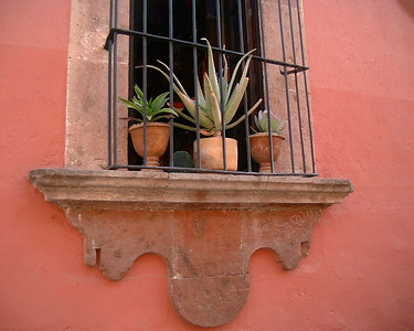 San Miguel windows,doors