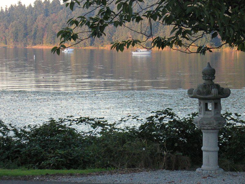 the little pagoda at the edge of lake washington