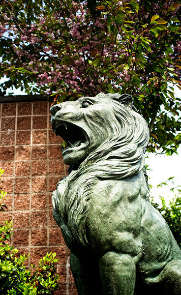 This lion guards the Columbia City Light Rail station