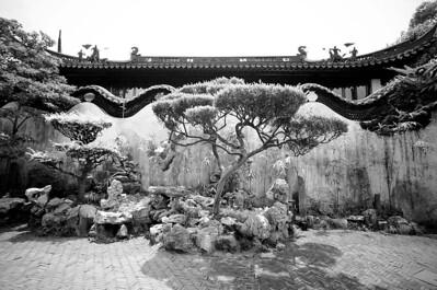 0612-Shanghai-B&W-18