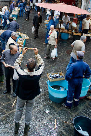 Fish Market in Catania (Sicily)