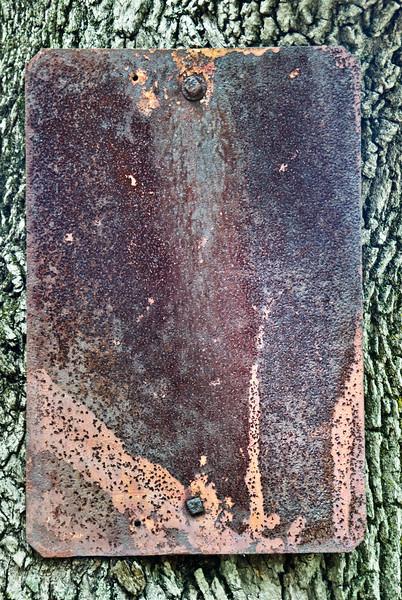 Old Street Sign on park tree.