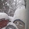 Trish Garrett submitted this photo of Upper Pottsgrove PA