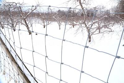 Southington_Winter_Scenic016