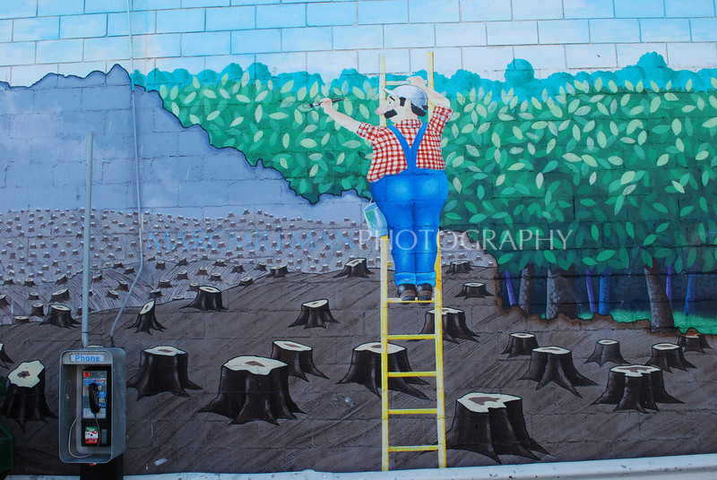 Paint a better world (Venice- Fri 10 10 08)