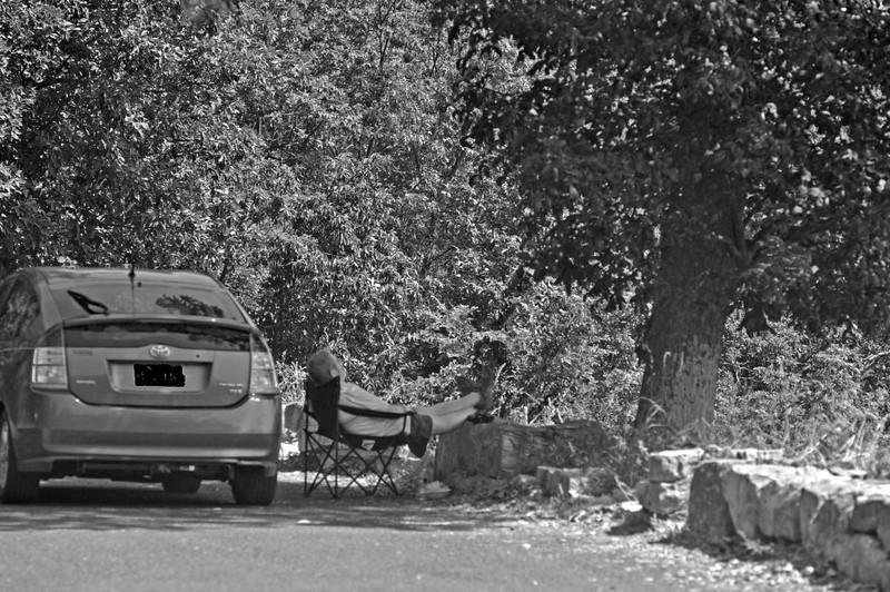 "Catching some ZZZZs at Ivy Overlook, Shenandoah National Park, Skyline Drive  Original color version <a href=""http://rdungan.smugmug.com/Day-Trippin-2/2011-07-29/18284646_ZKRfqb#1407018098_W9xBfHc"">http://rdungan.smugmug.com/Day-Trippin-2/2011-07-29/18284646_ZKRfqb#1407018098_W9xBfHc</a>"