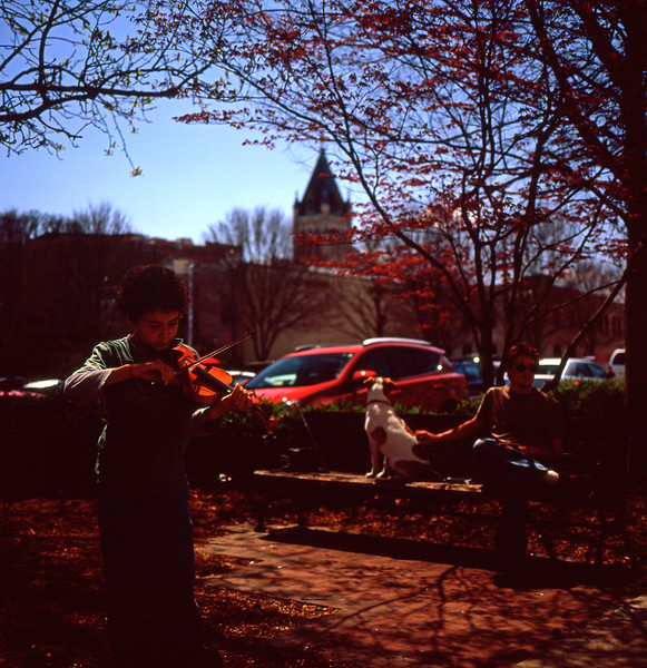 Downtown Asheville Violinist #1