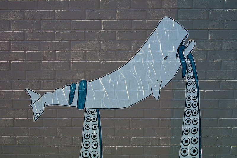White whale  poster downtown Austin, Texas