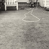 When I came across this scene I just had to photograph it. It was if someone had purposely arranged the hose to add a nice touch of visual interest to this yard in Ferndale, CA.