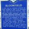 Bloomfield Street Scenes