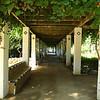 Jardin Los Leones, Seville, Spain.