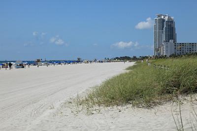 Natural Beach Beauty, sands of South Beach, Florida.