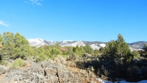 to taos march 7 2013
