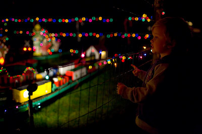 The Nisja Bear House is elaborately decorated with lights and a model train each year for Christmas.