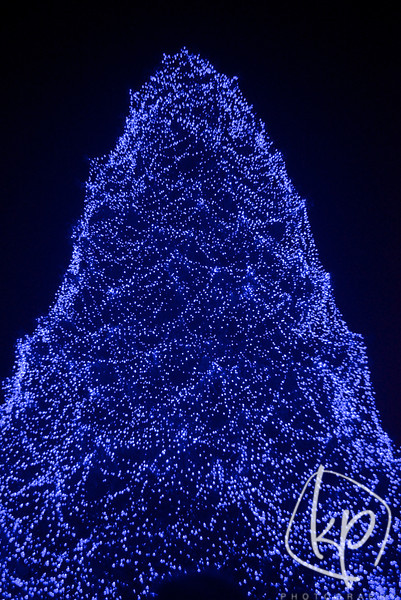 dsc_2981 - Toledo Zoo Lights Before Christmas