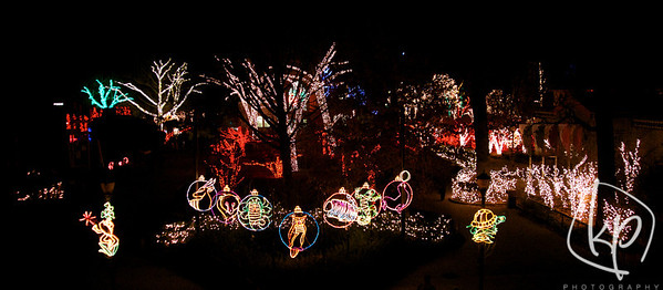 Toledo Zoo Lights Before Christmas 2012 - KP Photography