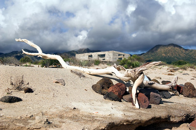Driftwood piled up on the beach in front of an abandoned village on a remote island in the Sea of Cortez