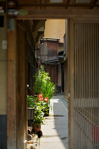Urban Kyoto, rambling in downtown areas  Details in Gion Quarter and Ponto-cho, City of Kyoto