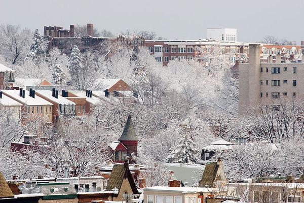snowy rooftops and trees of Adams Morgan, Washington DC