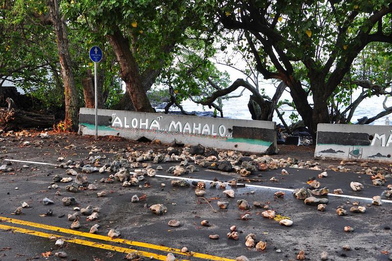 Alii Dr., Holualoa Bay