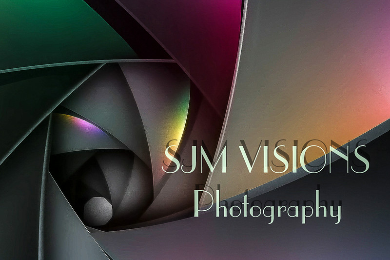 Welcome to SJM Visions....Where Sight Meets Sound!