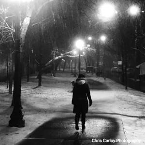 Kelly Park Snowstorm