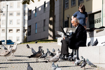 A man and his birds in Porto