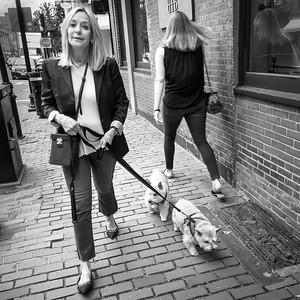 Dog Walker, Boston, Massachusetts (81431-BW)