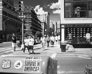 Crosswalk, New York City  (00156)