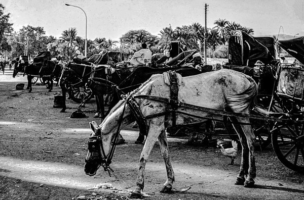 Luxor - October 1975