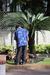 5D-Hawaii-IMG_8680
