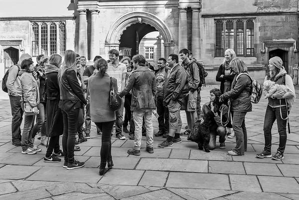 Doggie tourists
