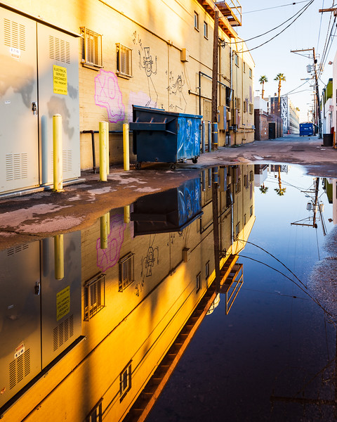 Reflection Alley