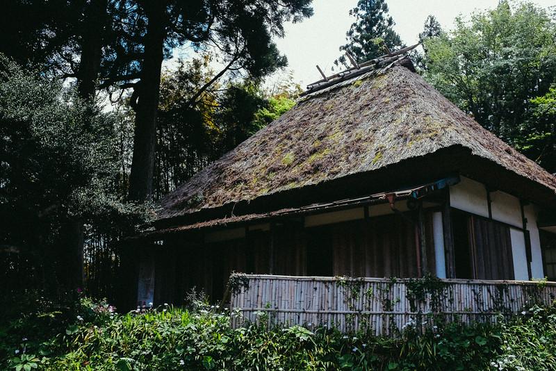 Japans Wilderness
